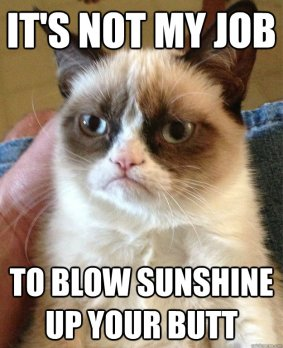 Who doesn't love a little grumpy cat?